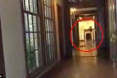 'Ghost' of Michael Jackson caught on camera pacing the corridors of Neverland